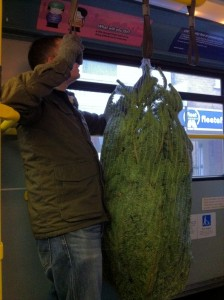 Christmas tree on the bus