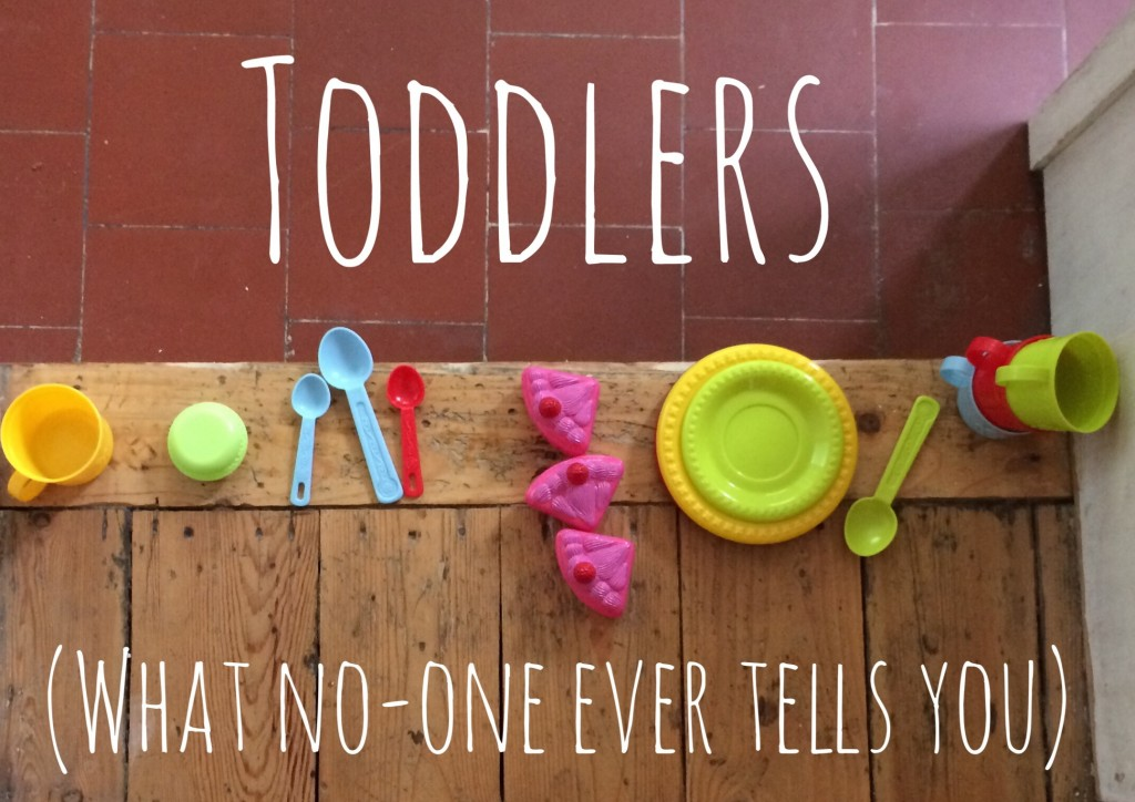 What no-one ever tells you about toddlers
