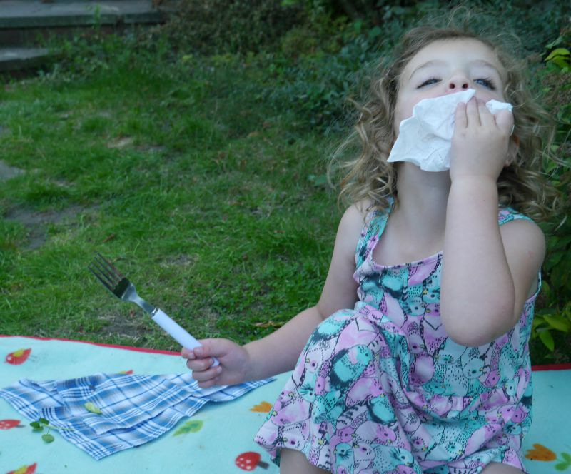 Huggies Wipes picnic - Style on the Go