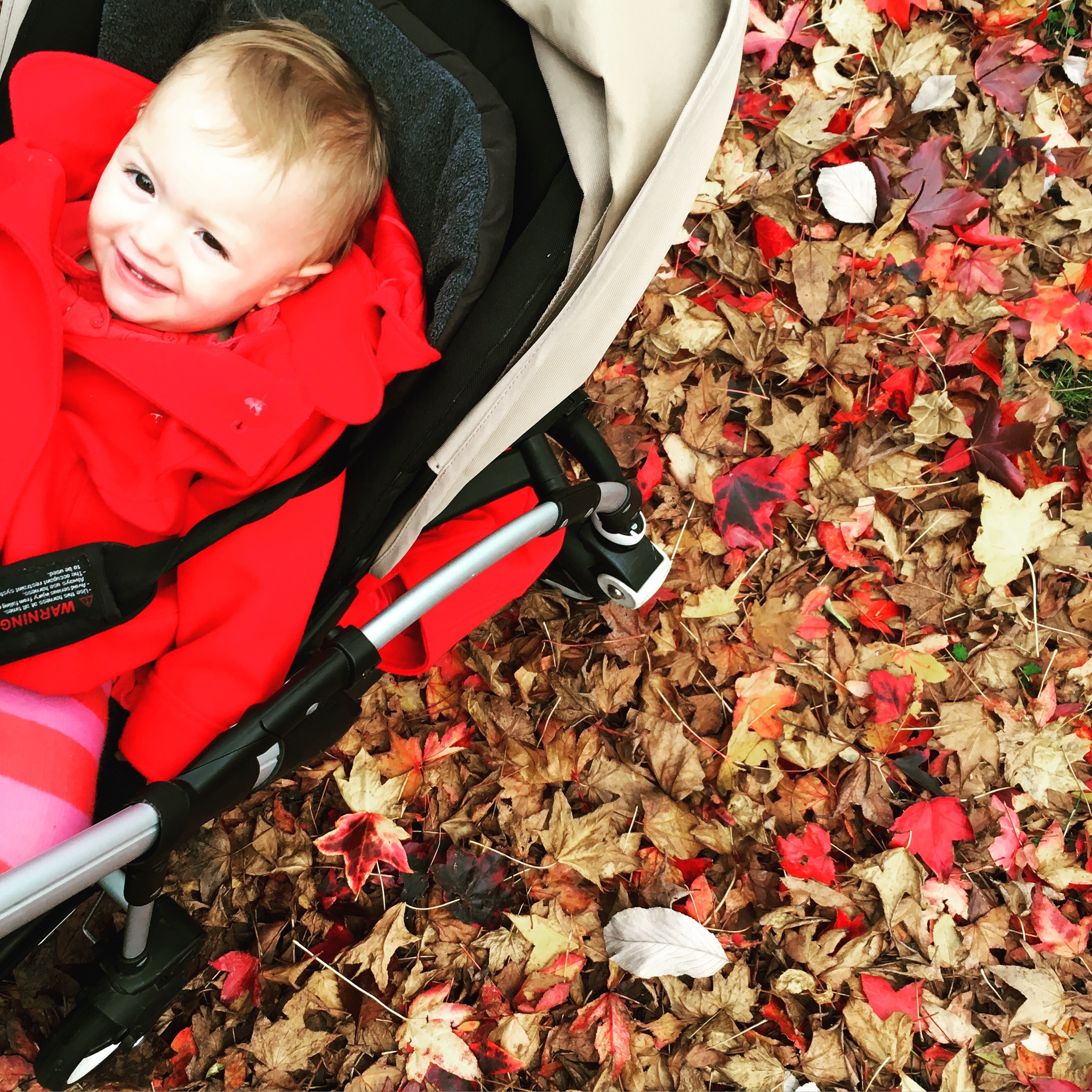 12 signs you're a mum in the autumn