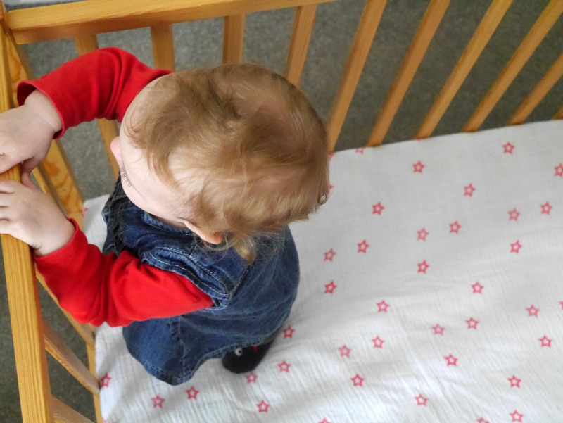 Compact cot organic mattress review
