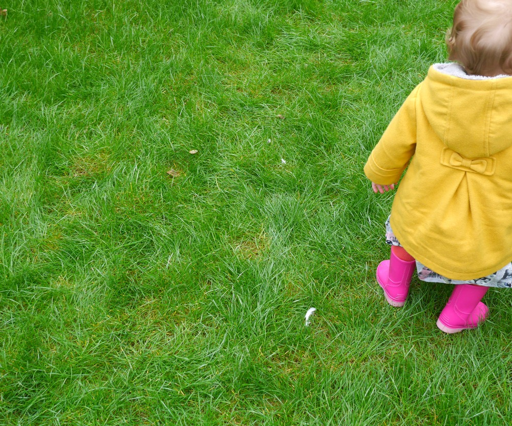 Toddler wellies