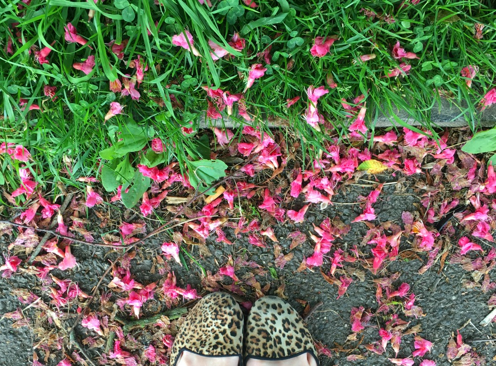 Blossom and leopard print shoes