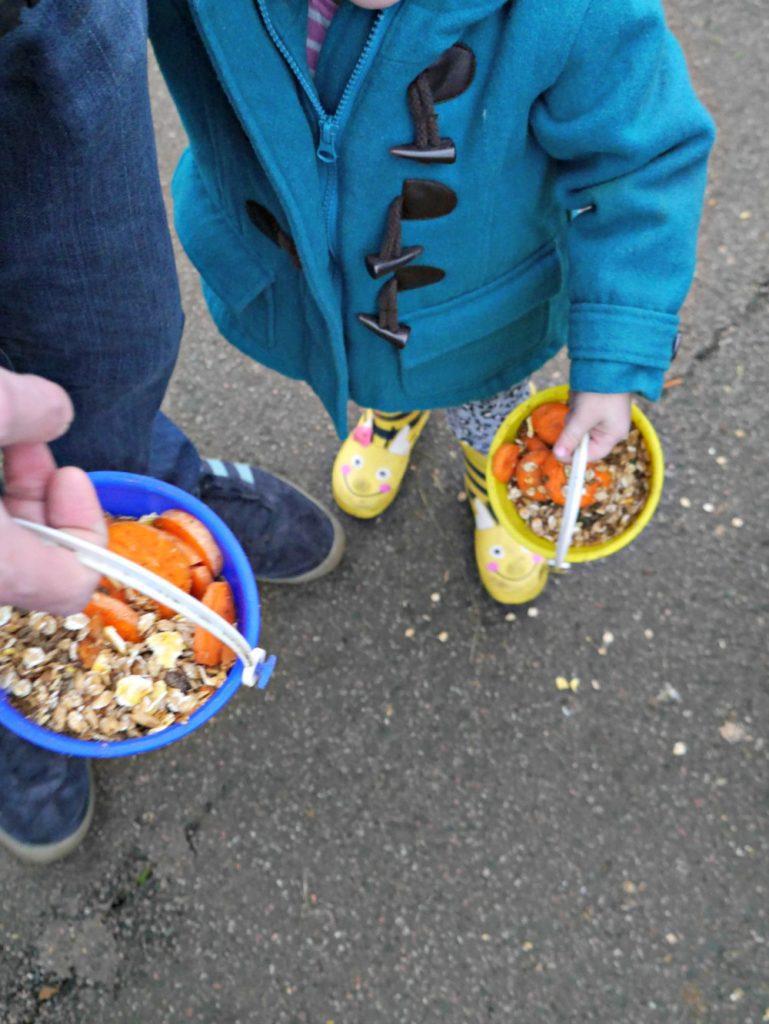 Feeding animals at Christmas Tree Farm in Kent