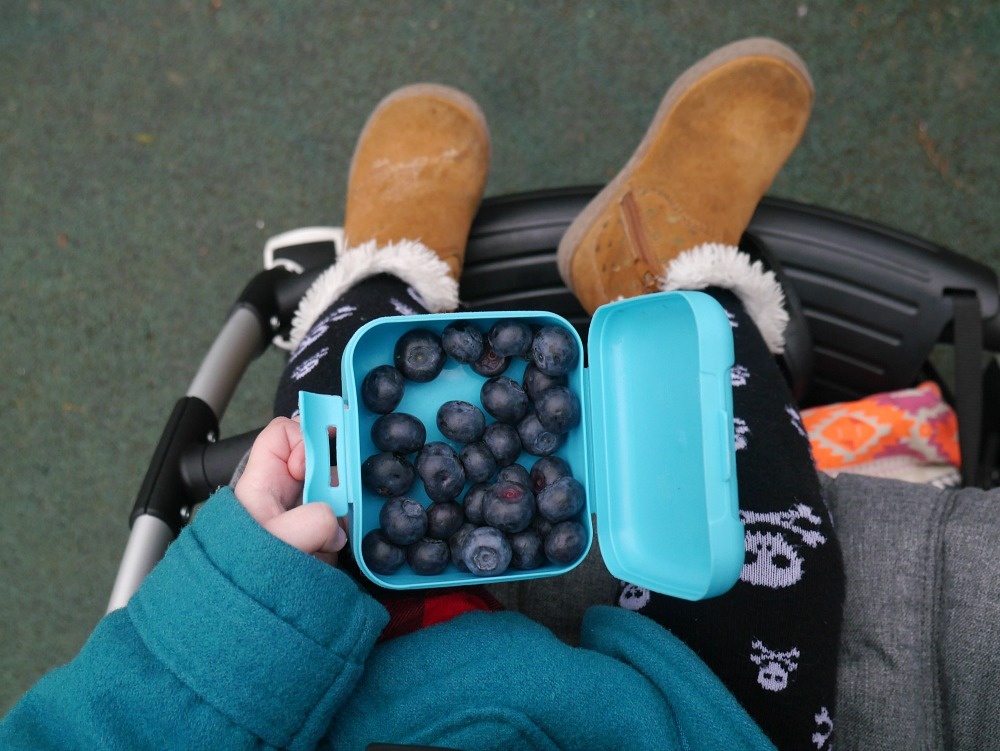 Bugaboo Bee 5 review - top view