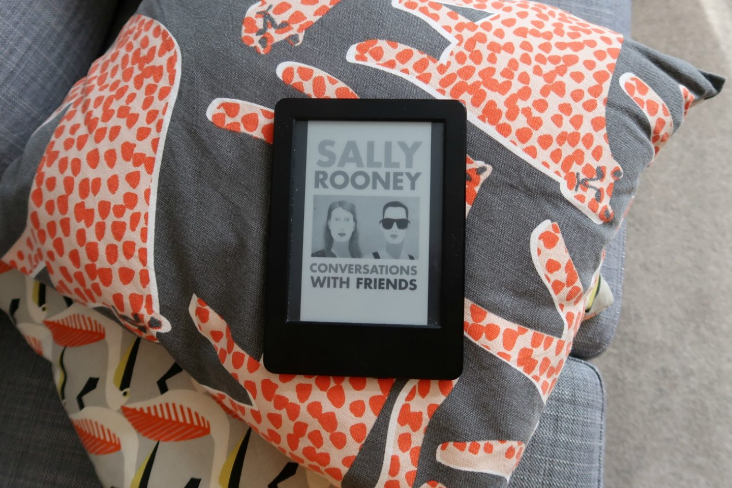 Conversations with Friends review - the book by Sally Rooney